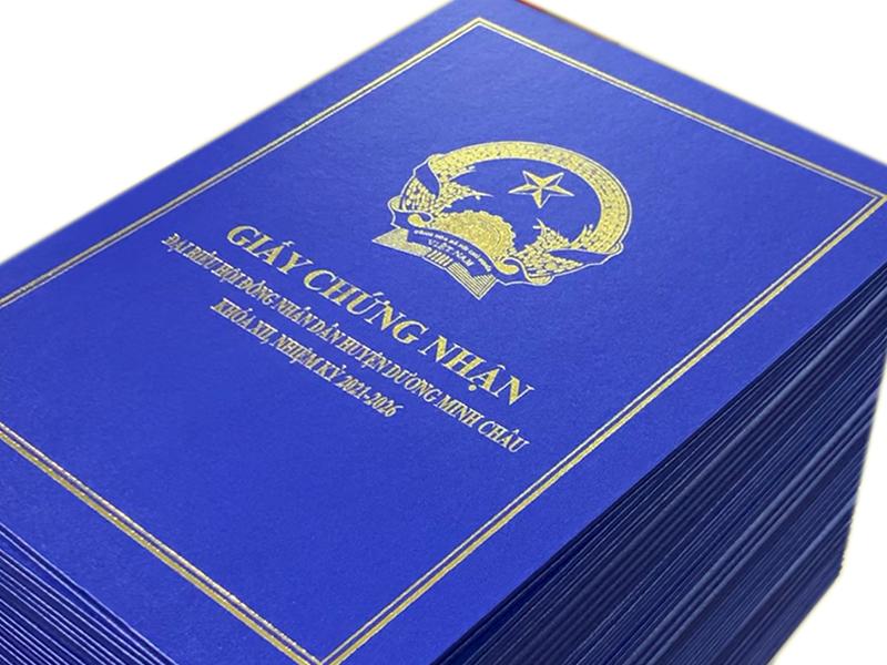 Folder, bìa sơ mi